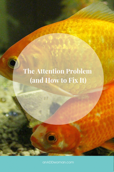 goldfish, attention, focus, ADHD